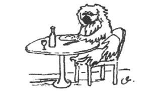 Tibetan Spaniel at the table