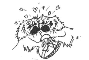 Tibetan Spaniels in love
