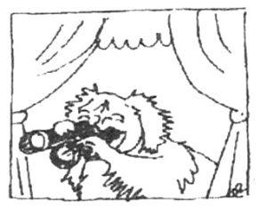 Tibetan Spaniel with binoculars